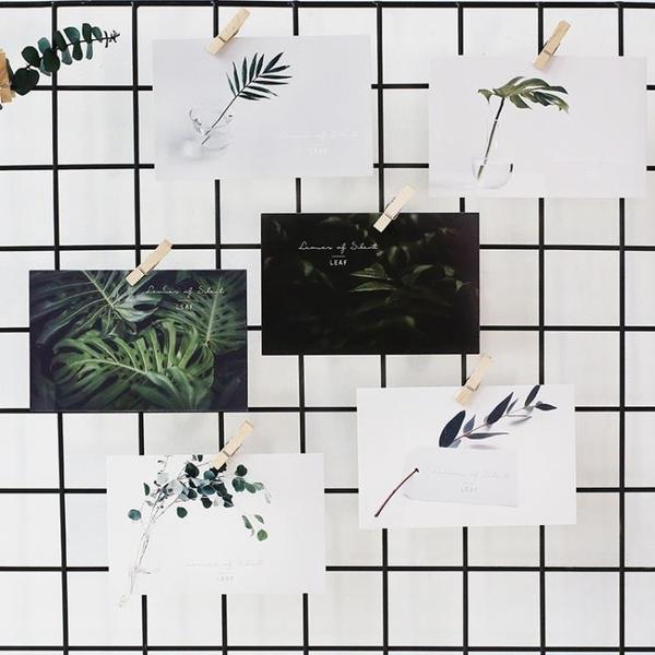 【伊人閣】葉葉無聲綠植明信片裝飾卡片文藝賀卡