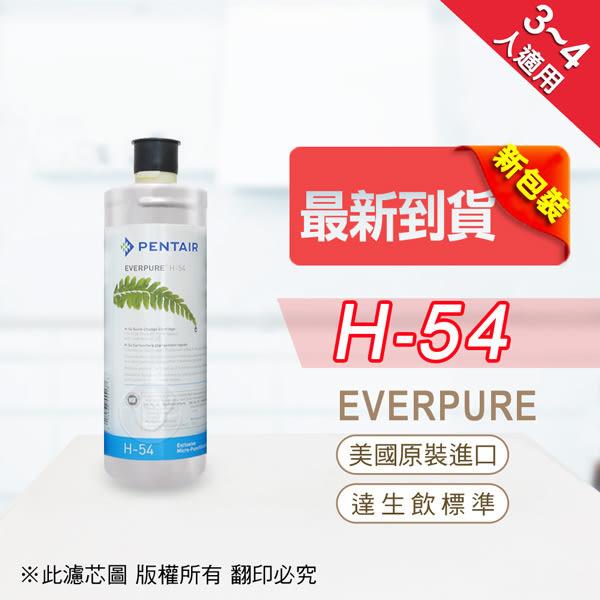 水蘋果居家淨水~快速到貨~免運費~贈餘氯測試液~Everpure 美國原廠平行輸入 H54 濾心