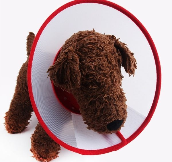 M號 寵物防舔防抓套/塑膠頭套/伊莉莎白頭套 4種尺寸 顏色隨機【4G手機】