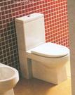 【麗室衛浴】英國  living  雙體馬桶 5010-30  (門市樣品)