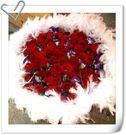(YO-62)網路花店情意花坊永和花店超級商城~99朵紅玫瑰花束搭配紫桔梗情人花束~配送全台