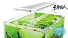 UP雅柏【小螃蟹Crab Aqua 頂級專業LED水草白燈 1尺/30cm】ㄇ型跨式 水草跨燈 魚事職人