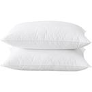 南極人枕頭枕芯一對裝助睡眠家用護頸椎枕單人學生宿舍整頭男夏季 設計師生活百貨