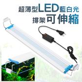 ⭐星星小舖⭐台灣出貨 超薄魚缸燈 LED 撐架可伸縮 魚缸燈 水族燈 水族用品 藍白光 18cm