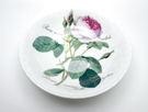 英國Roy kirkham浪漫淺玫瑰-17.5cm麥片碗