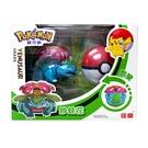 精靈寶可夢 Pokemon 變形系列 妙蛙花 寶貝球 酷變 庄臣 正體中文代理版 TOYeGO 玩具e哥