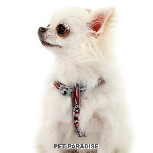【PET PARADISE 寵物精品】 Field Glide 反光雙色胸背帶【SS】 寵物胸背帶 SALE