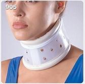 【宏海護具專家】 護具 護頸 LP 905 硬式頸部固定圈 (1個裝) 【運動防護 運動護具】