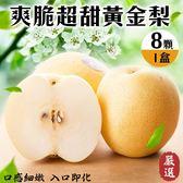 【果之蔬-全省免運】嚴選爽脆超甜黃金梨8顆禮盒X1盒(約400g/顆)