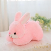 2只裝 網紅仿真小兔子公仔毛絨玩具可愛小白兔玩偶布娃【繁星小鎮】