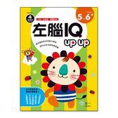 左腦Iqupup(5-6歲)