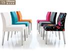 餐椅【UHO】 態度餐椅(多種顏色挑選) 免運費 HO18-760-1 779-1 839-6