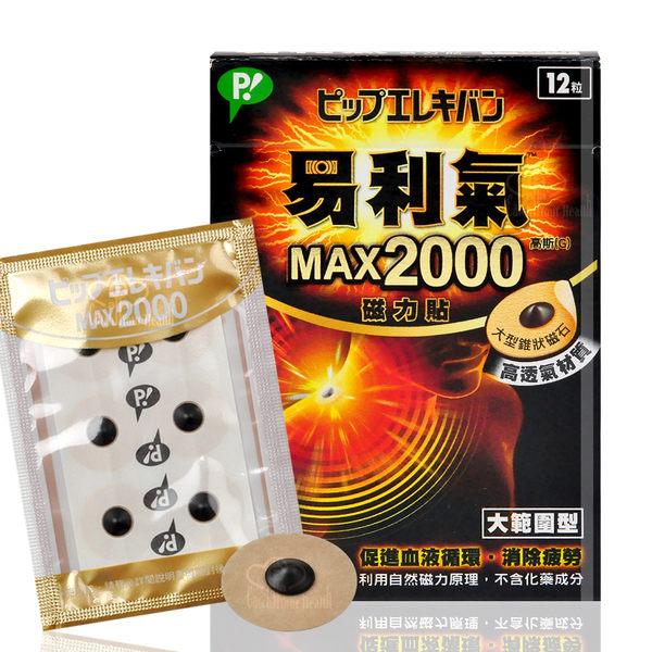日本製 公司貨 易利氣2000磁力貼(12粒)