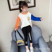 女童長袖T恤新款秋裝韓版兒童打底衫秋冬季加厚洋氣女孩上衣 晴天時尚館