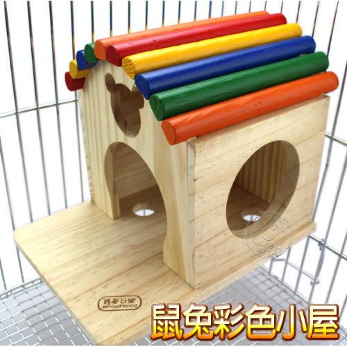 【培菓平價寵物網】   鼠兔用彩色小屋24*19cm