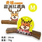 *KING WANG*CHIKEN奇啃 歐洲紅鹿角M 70g‧天然潔牙骨 100%自然脫落‧狗零食