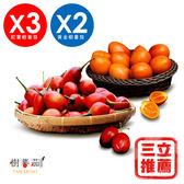 (預購12/15出貨)春霖山園 無毒栽種鮮採樹蕃茄(紅寶石+黃金)5入組-電電購