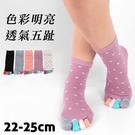 【衣襪酷】日式造型五趾襪 愛心款 伍洋