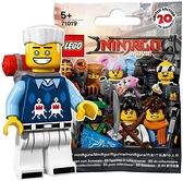 Rakutaka Lego Stray Hands Lego Ninja Go The Movie Ran (71019 – 10)
