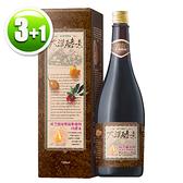【買3送1】大漢酵素 樟芝菌絲體蔬果植物醱酵液(720ml/瓶)x3