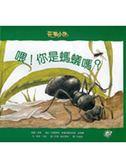 (二手書)喂!你是螞蟻嗎?:花園小徑(4)