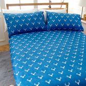 雙人床包(含枕套)【潮】絲絨棉磨毛、柔軟透氣、四季皆宜、寢居樂台灣製