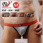 性感內褲 男性女性用品【現貨】【網將WJ】條紋網紗半透明性感丁字褲
