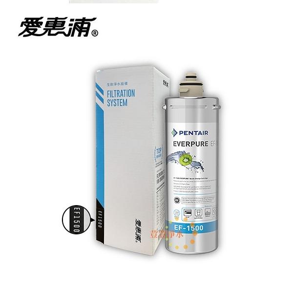 (贈禮券)台灣愛惠浦PENTAIR EVERPURE EF-1500 濕式碳纖活性碳 原廠公司貨盒裝濾芯 荳荳淨水