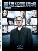 重返犯罪現場 第10季 DVD NCIS Season 10 免運 (購潮8)