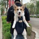 寵物背包外出雙肩包