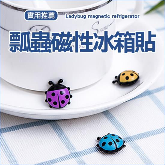 ✭米菈生活館✭【J102】瓢蟲磁性冰箱貼 一組六入 廚房 櫥櫃 立體 留言 紙條 磁鐵 照片 黑板 白板