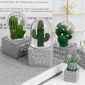 綠意盎然植物系水晶球 北歐風家居裝飾桌面擺件       SQ9062『樂愛居家館』TW