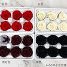 進口永生4-5CM玫瑰-乾燥花圈 乾燥花束 不凋花 拍照道具 室內擺飾 乾燥花材-62元/朵