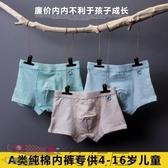 兒童內褲男純棉平角褲寶寶三角四角小孩學生中大小童內褲