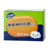南僑 水晶葡萄柚籽抗菌洗手皂 120g【新高橋藥妝】