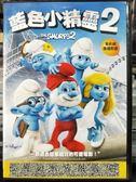 挖寶二手片-P04-308-正版DVD-動畫【藍色小精靈2 國英語】-