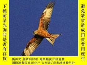 二手書博民逛書店The罕見State of the Nation s Birds