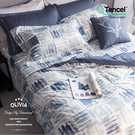 標準雙人床包冬夏兩用被套四件組【DR5005 丹尼爾】 MOC莫代爾棉 台灣製 OLIVIA