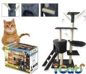 *KING*日本寵喵樂《貓咪玩樂跳台-附樓梯》(加厚加版加大款)貓跳台/貓爬架AM601