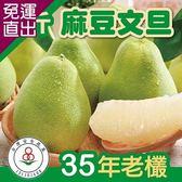 家購網嚴選 預購-台南麻豆文旦35年老欉5斤裝(4~7顆)x4【免運直出】