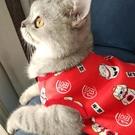 貓咪衣服 貓貓橘貓幼貓小貓英短小奶貓的新年可愛寵物秋冬裝【快速出貨】