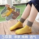 男童襪子 兒童運動風中筒襪子