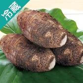 【台灣】特級鮮甜大甲芋頭 500~600G/粒【愛買冷藏】