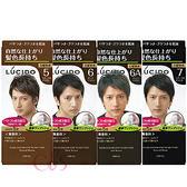 日本 LUCIDO 按壓式染髮霜 自然黑/深棕/自然棕/灰褐 四款供選 ☆艾莉莎ELS☆