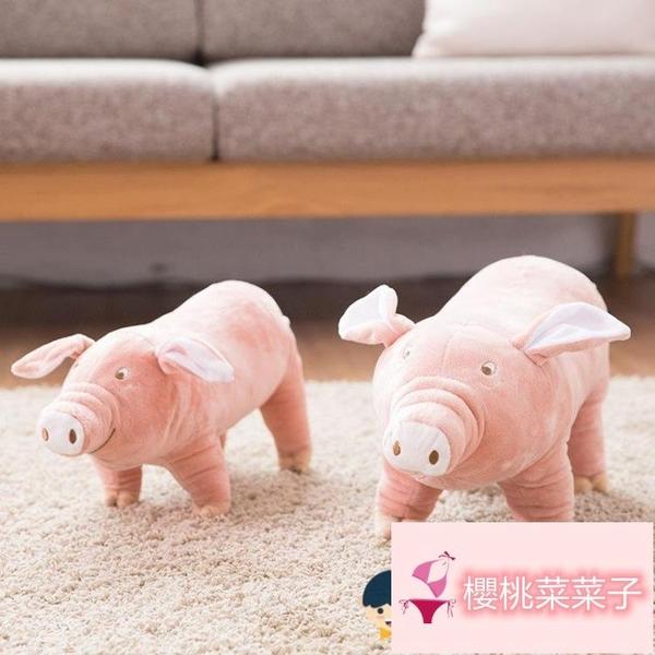 寵物用品公狗性泰迪法斗發情期狗狗玩具陪睡豬【櫻桃菜菜子】