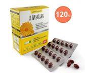 橙心~葉黃素軟膠囊120顆/盒(大盒)