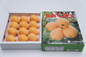 ♥((德記水果禮盒))♥日本長崎縣溫室茂木大枇杷