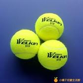 網球初學者高彈性耐打訓練球拍耐磨初中級比賽球按摩寵物球【小橘子】