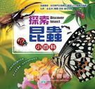 【世一】探索昆蟲小百科(B015003)←百科 圖鑑 昆蟲 圖書 兒童 探索 蝴蝶