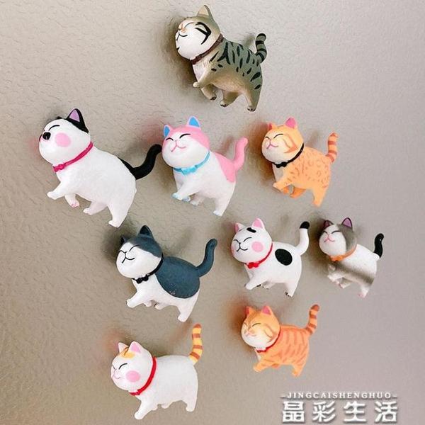 冰箱貼3D立體貓咪冰箱貼磁貼卡通可愛治愈冰箱裝飾吸鐵石網紅北歐磁力貼 晶彩